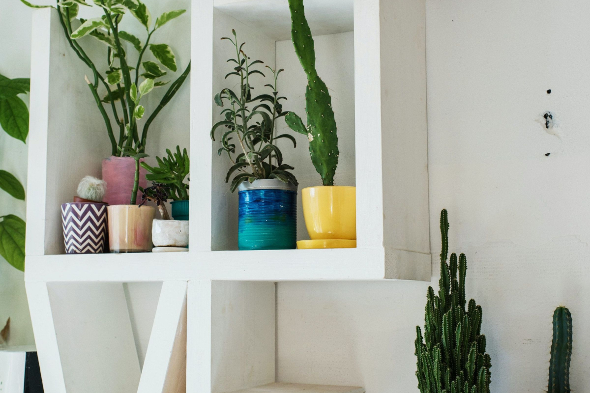 7 Best Guides to Styling Your Home 1