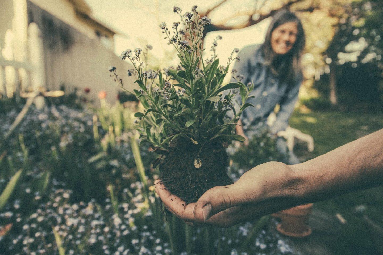 Eco-friendly gardening