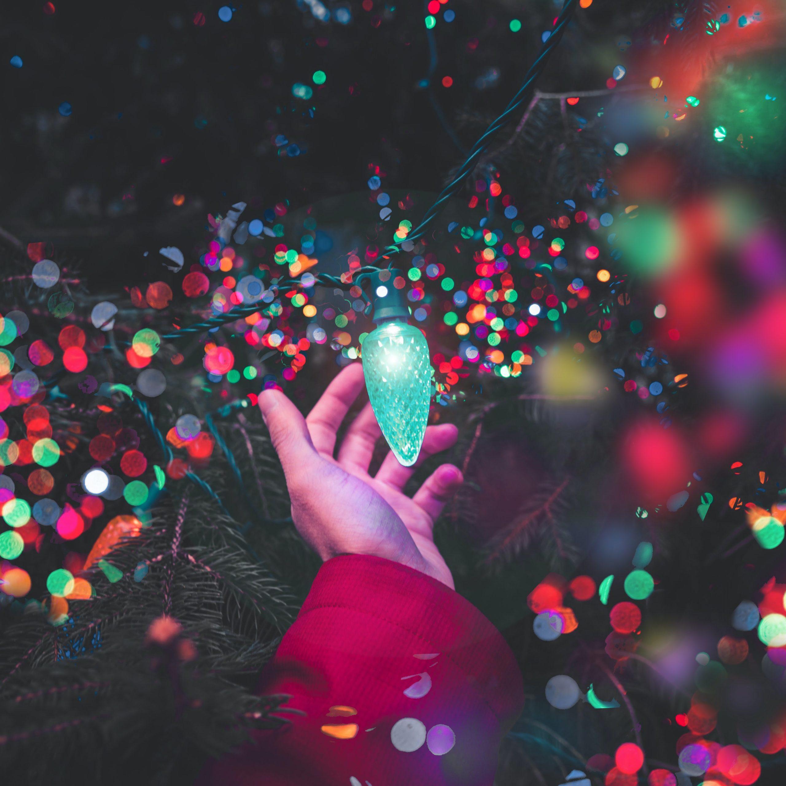 Shopping Tips For Christmas Lights 2